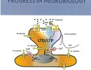Cover Figure in March 2012 Neurobiology
