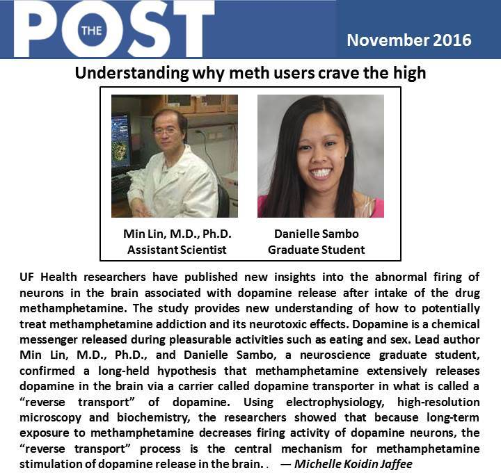Dr. Habibeh Khoshbouei's lab research update –